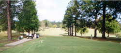 Here you can see the long fairways and open spaces for you to hit the ball