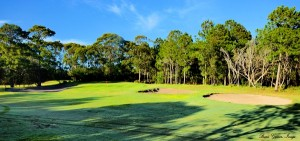 photo-tuncurry-course-01