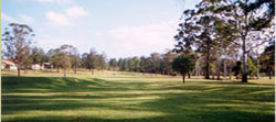 Some more of the open spaces as described earlier